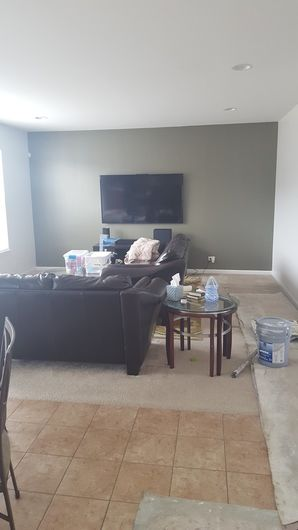 Painted Accent Wall in Lisle, IL (2)