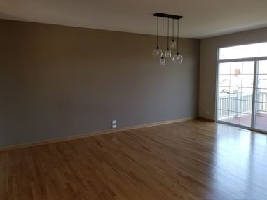 Accent Wall / Interior Painting in Naperville, IL (1)